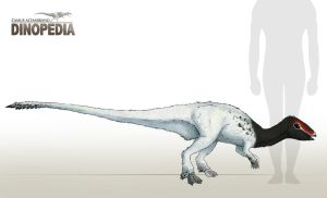 Leaellynasaura amicagraphica by CamusAltamirano