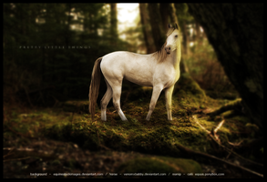 pretty little things by equinestudios