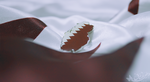 Qatar national day by w6n3oshaq