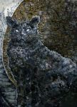 cat by Bacho