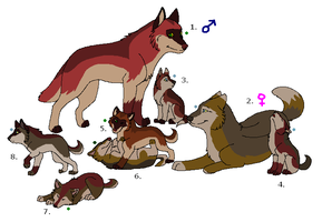 Wolf Adoptables 22: CLOSED by Manic10974