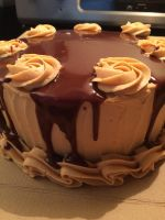Chocolate Peanut Butter Cake by Sparkleschic