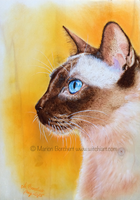 Siamese cat by WitchiArt