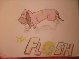 The Flashet Hound by K9girl06