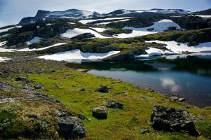 Above the Timberline in Norway by Vironevaeh