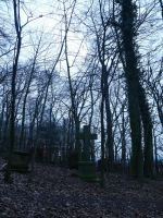 Graveyard in the forest 6 by Dragoroth-stock