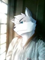 Wing Wolf - Very handsome me... 'X3 by wingwolf88