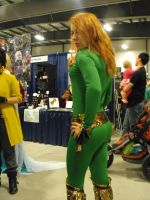 Ottawa comicon cosplays 107 by japookins