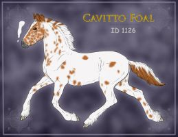 Cavitto 1126 Design by OceanLore