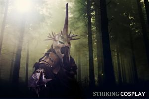 The Lord of the Rings: Witch King of Angmar 3 by StrikingCosplay