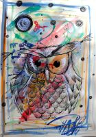 fast owl by PinkaArt