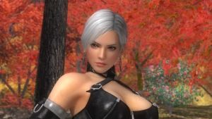 DEAD OR ALIVE 5 Last Round by ShaddowThunder