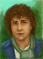 Peregrin Took by Zackira