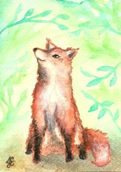 Fox in the Forest by Justine-Ehlers