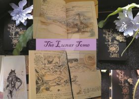 The Lunar Tome 2.0 by Tengger-Wolf