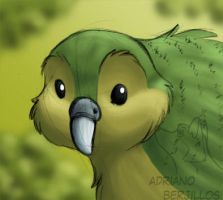 Another kakapo by Adri-Gummi