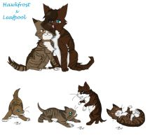 Leaffrost Kits  by Dominothekittycat