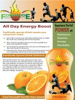 Fortitude Product Sheet by darrelltate