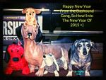 Happy New Year From The Dashound Gang:Studio Frame by HomeOfBluAndshadows