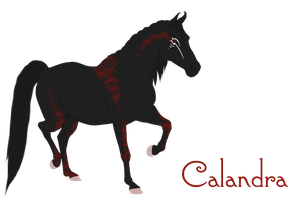 009 AS Calandra Reference by BlueFire-Phoenix