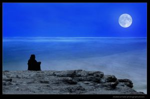 Moon's Lament by itash