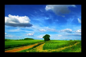 Countryside Landscape by salmanarif