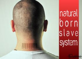Natural Born slave System by webby85