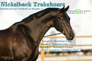 Nickelback Trakehners Banner by Starcather9