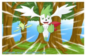 SHAYMIN: AIR RACING by PEQUEDARK-VELVET