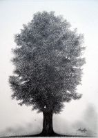 Tree Drawing by aakritiarts