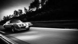 1979 Trans Am on the Road by AmericanMuscle