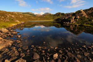 Blackbeck Summer by scotto