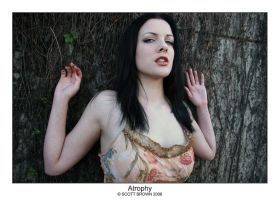 Atrophy III by scottb
