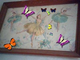 Photo covered butterflies by IttyBitty1996