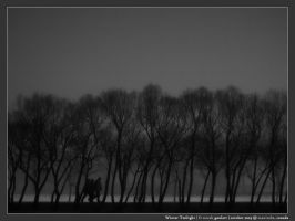 Winter Twilight by micahgoulart