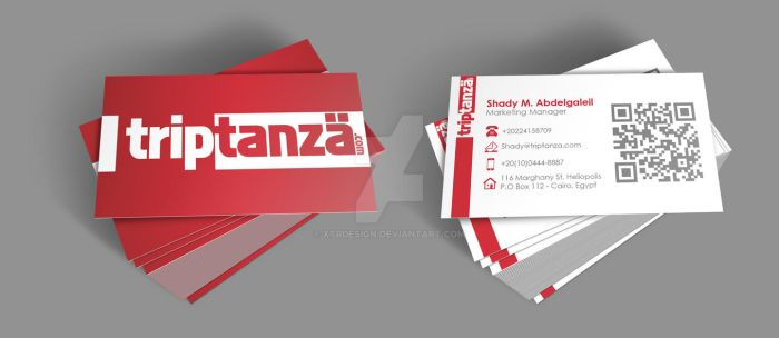 Triptanza Business Cards by XtrDesign