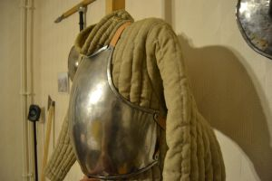 Gambeson and harness by Skane-Smeden