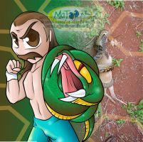WWE - The Snake by Matoonz