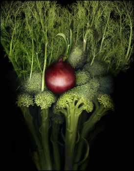 Broccoli, Fennel, and Red Onion by kparks