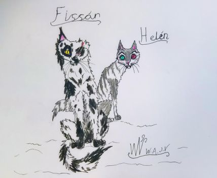 Cat Street   Fissan and Helen by Giorou