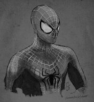 Amazing Spider-man 2 Concept Art by FelipeFierro