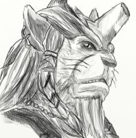 Sketch - Kimahri Ronso by WizzardFye