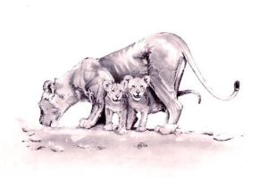 Lioness and Cubs by Sparkmachine