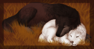 Nap by Mauston-girl