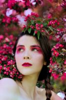 Blossoms2 by DmajicPhotography