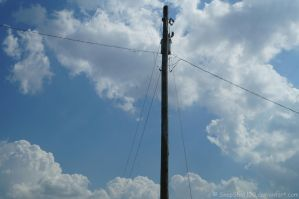 Utility Pole (Unedited) by SnapShot120