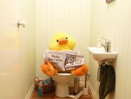 Toilet Duck by SixDifferentWays89