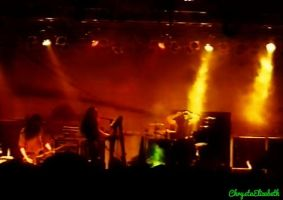 Type O Negative - Stuttgart 1993 by Christa-elizabeth