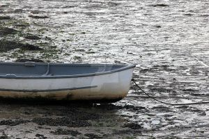Boat In Mud by ZoeCoombesPhoto