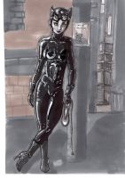 Catwoman street by HostIle9455